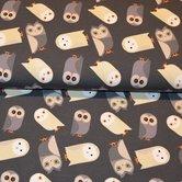 Owl-grey
